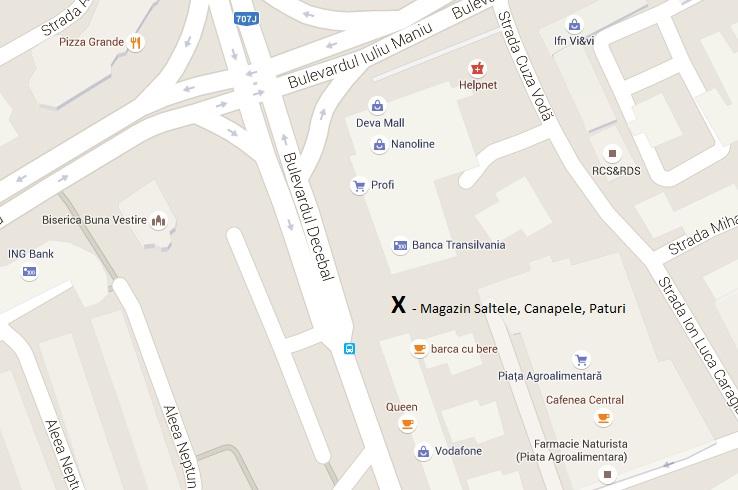 Locatie Harta de pe google maps